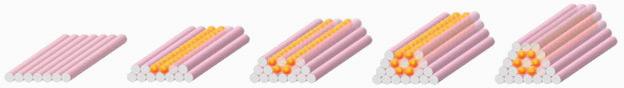 Impression de tissu humain, où les couches mauves correspondent au gel et les couches orange aux cellules vivantes. (Source : Organovo)